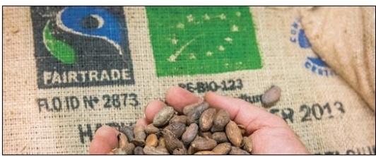 Schokolade, Kakao und geröstete Kakaobohnen