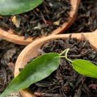 Mount Kenya Tee - Teeblätter